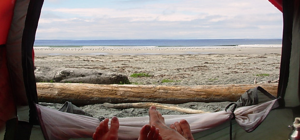 Cape Scott Park Beach Camping